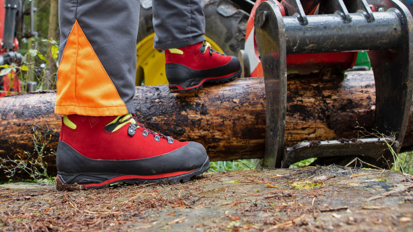 603114_protector-forest-red-yellow